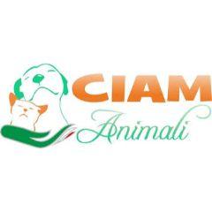 CIAM IT