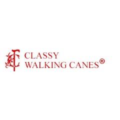 Classy Walking Canes